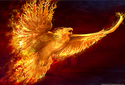 tom-wood-phoenix-rising
