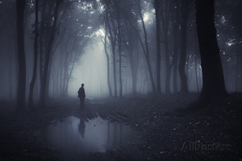 ando6-man-in-a-dark-forest-with-fog-and-pond
